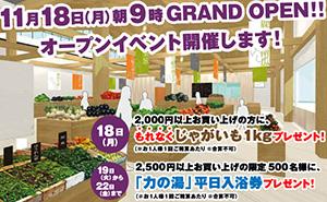 2013年11月18日朝9時に、じねんと市場グランドオープンします!