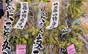 丹波篠山産 黒枝豆