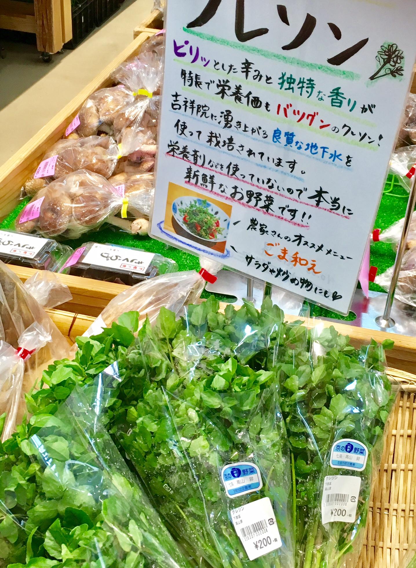 春が旬のお野菜