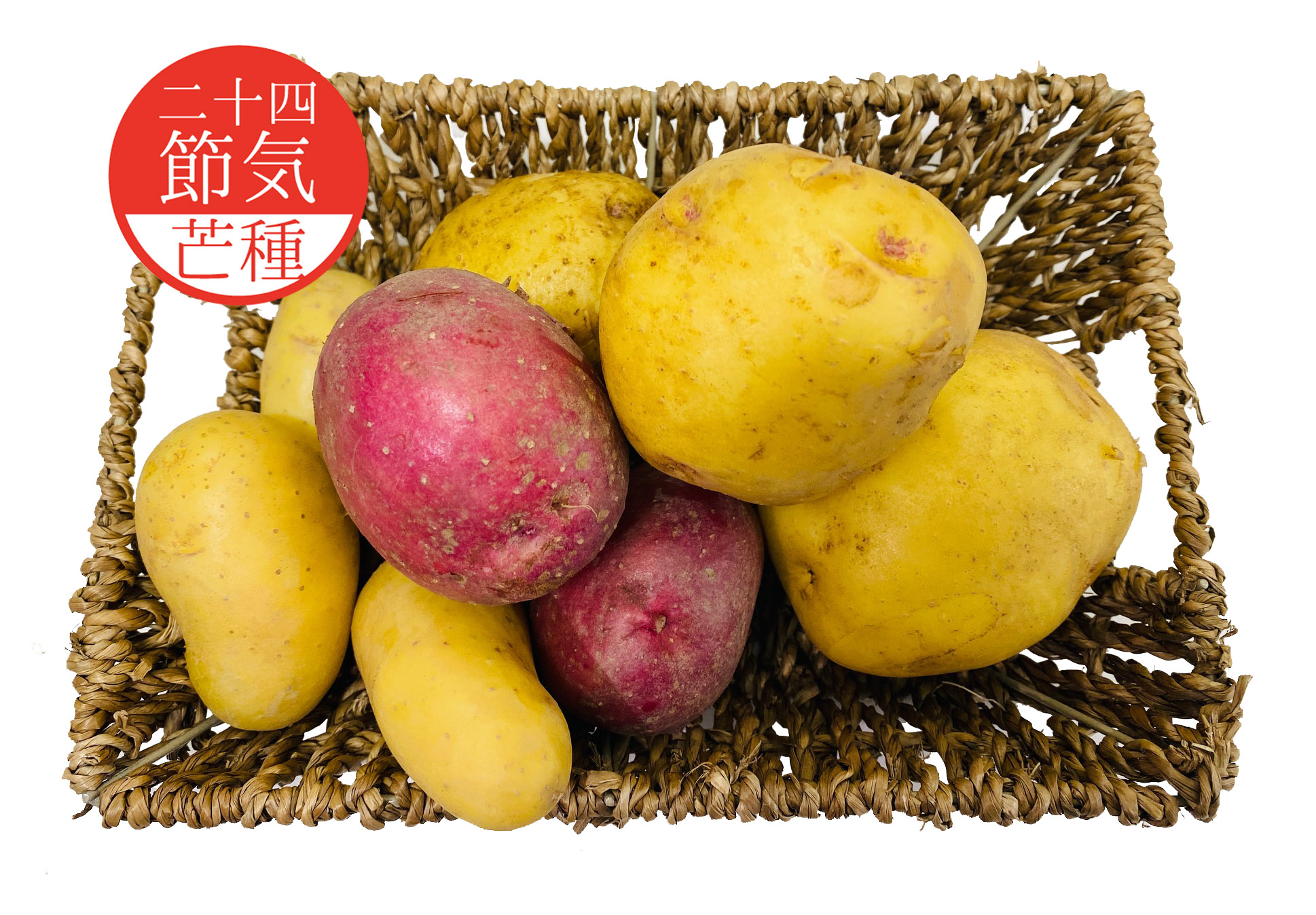 6月5日芒種「新じゃがいも」が楽しい!!