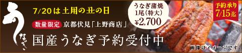 数量限定国産うなぎ予約受付中!うなぎ蒲焼き(特大)¥2,700