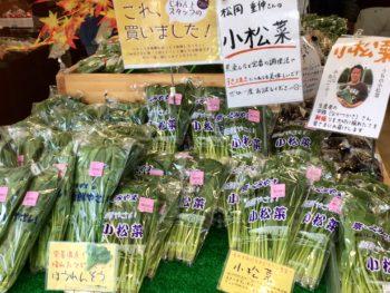 京都産小松菜