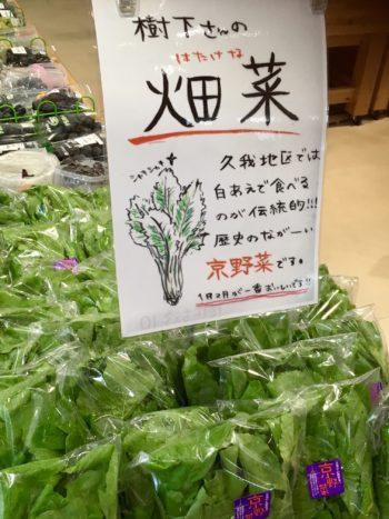 京都産畑菜