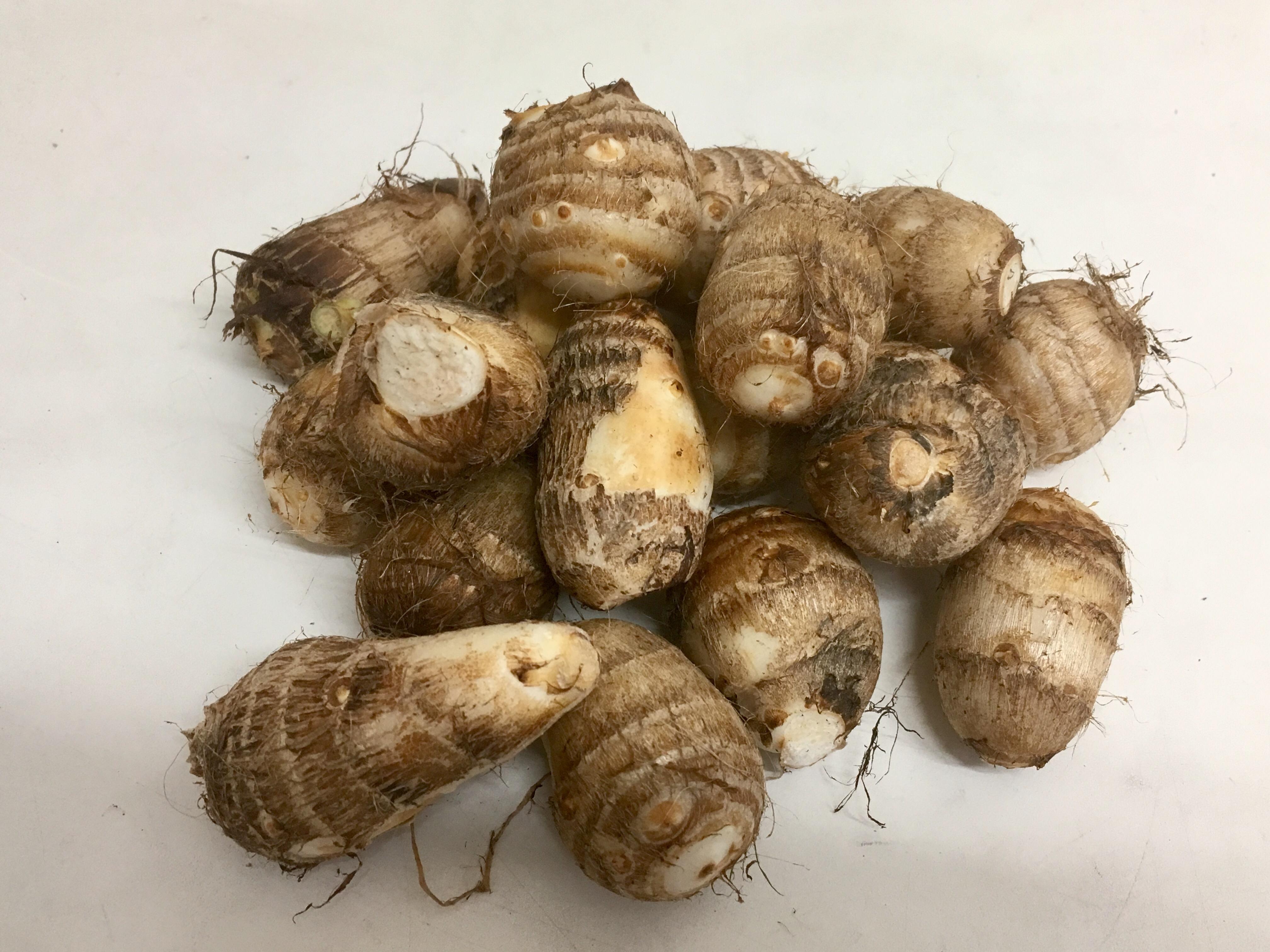 旬の野菜情報