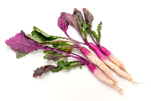 11月の注目野菜「日野菜」