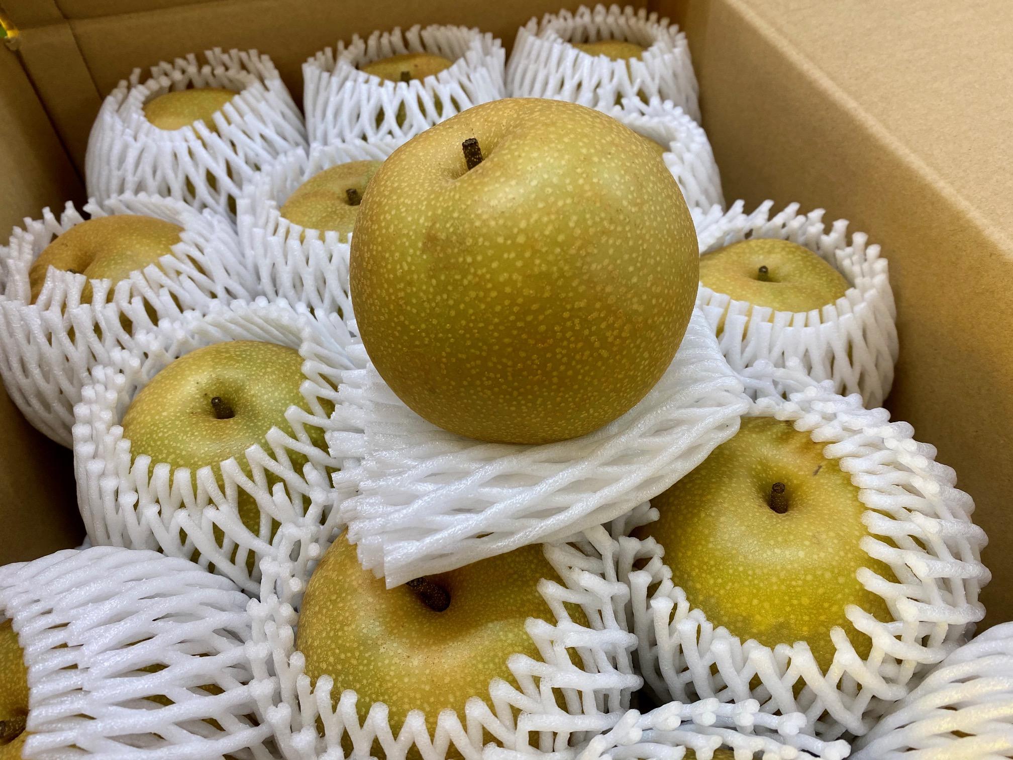 京都産の梨が入りました